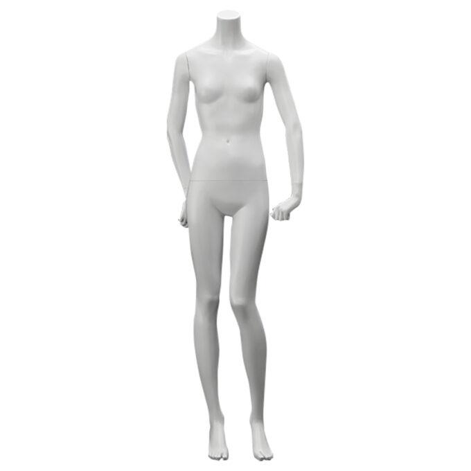 Junior Headless : マネキン PWHA1603A